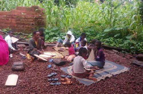 Article : Les '' Alludje'' : Ces  structures  traditionnelles  qui  favorisent la  paix  et  l'harmonie  au  Fouta Djallon